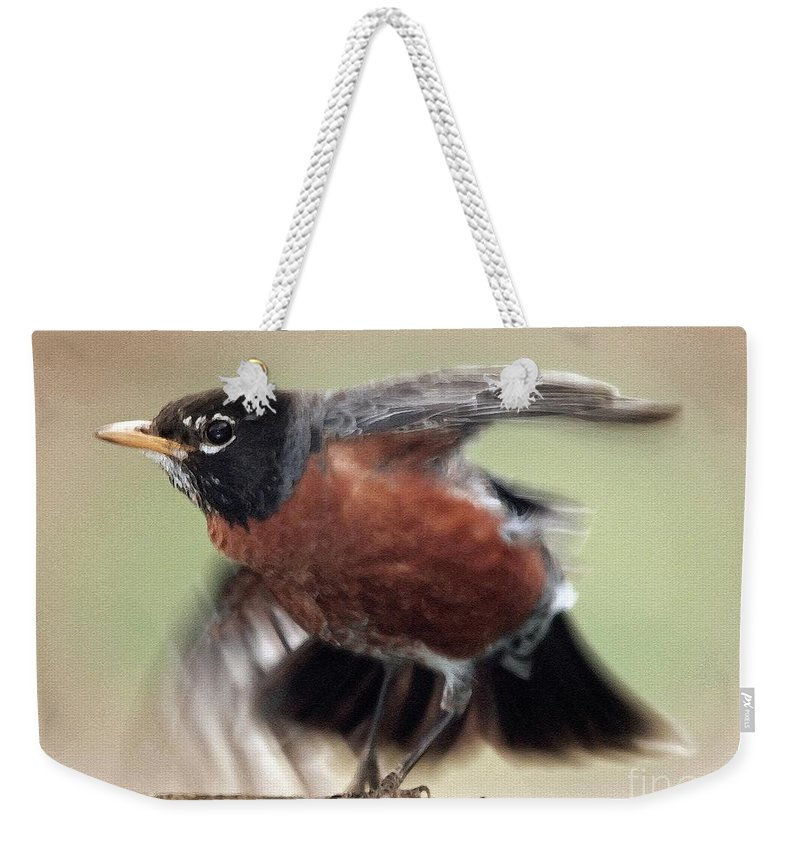 Mccombie Weekender Tote Bag featuring the painting An Entertaining Baby American Robin by J McCombie