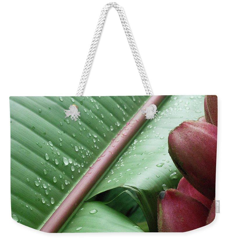 Banana Weekender Tote Bag featuring the photograph Banana Leaf by Heiko Koehrer-Wagner