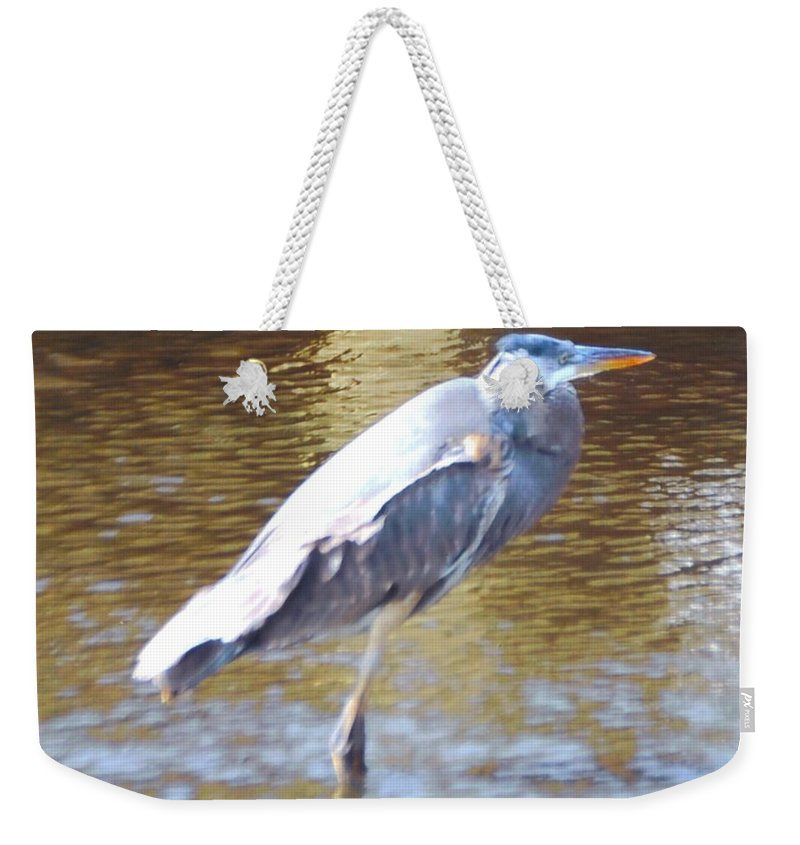 North Ft.myers Weekender Tote Bag featuring the photograph Blue Heron by Robert Floyd
