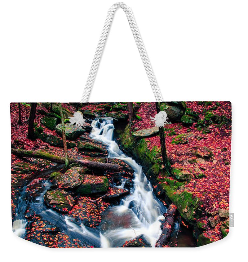 Waterfall Weekender Tote Bag featuring the photograph Chesterfield Gorge New Hampshire by Edward Fielding
