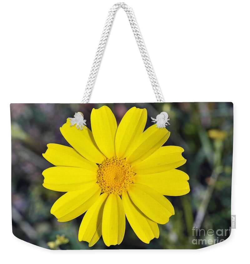 Chrysanthemum Coronarium; Glebionis Coronaria; Crown Daisy; Daisy; Daisies; White; Yellow; Flower; Wild; Plant; Spring; Print; Photograph; Photography; Springtime; Season; Nature; Natural; Natural Environment; Natural World; Flora; Bloom; Blooming; Blossom; Blossoming; Color; Colour; Colorful; Colourful; Earth; Environment; Ecological; Ecology; Country; Landscape; Countryside; Scenery; Macro; Close-up; Detail; Details; Esthetic; Esthetics; Artistic; Flowers Weekender Tote Bag featuring the photograph Crown Daisy Flower by George Atsametakis