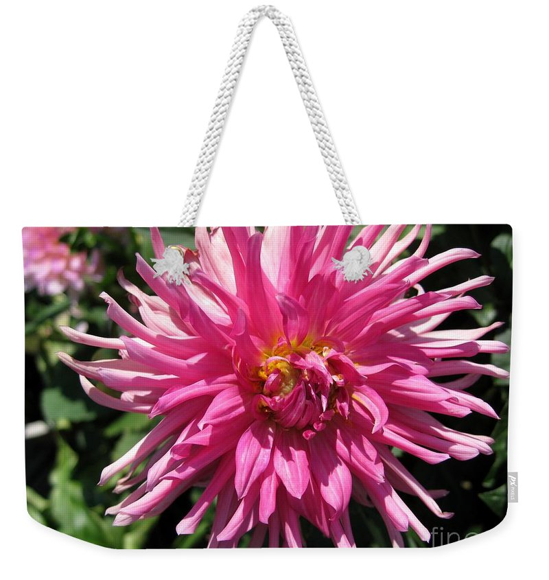 Mccombie Weekender Tote Bag featuring the photograph Dahlia Named Pretty In Pink by J McCombie