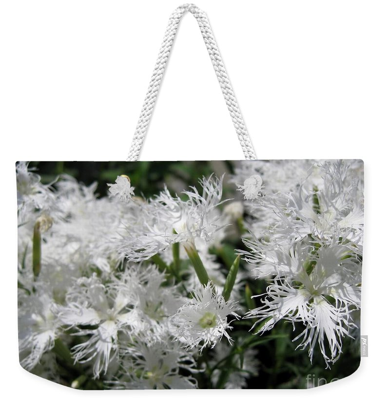 Dianthus Superbus Weekender Tote Bag featuring the photograph Dianthus Superbus - White by J McCombie