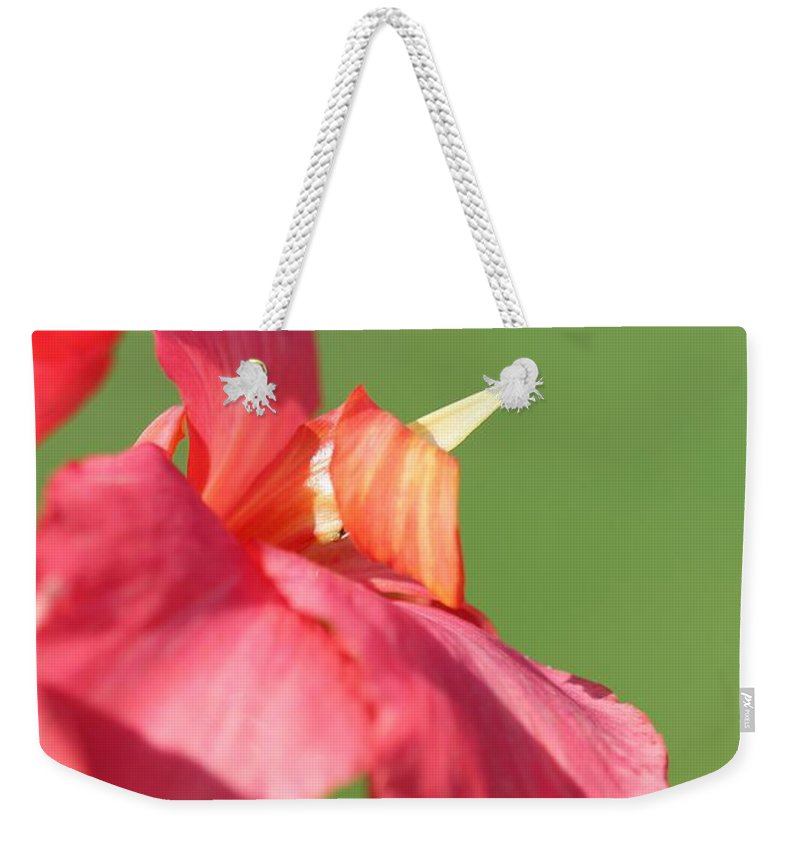 Canna Weekender Tote Bag featuring the photograph Dwarf Canna Lily Named Shining Pink by J McCombie
