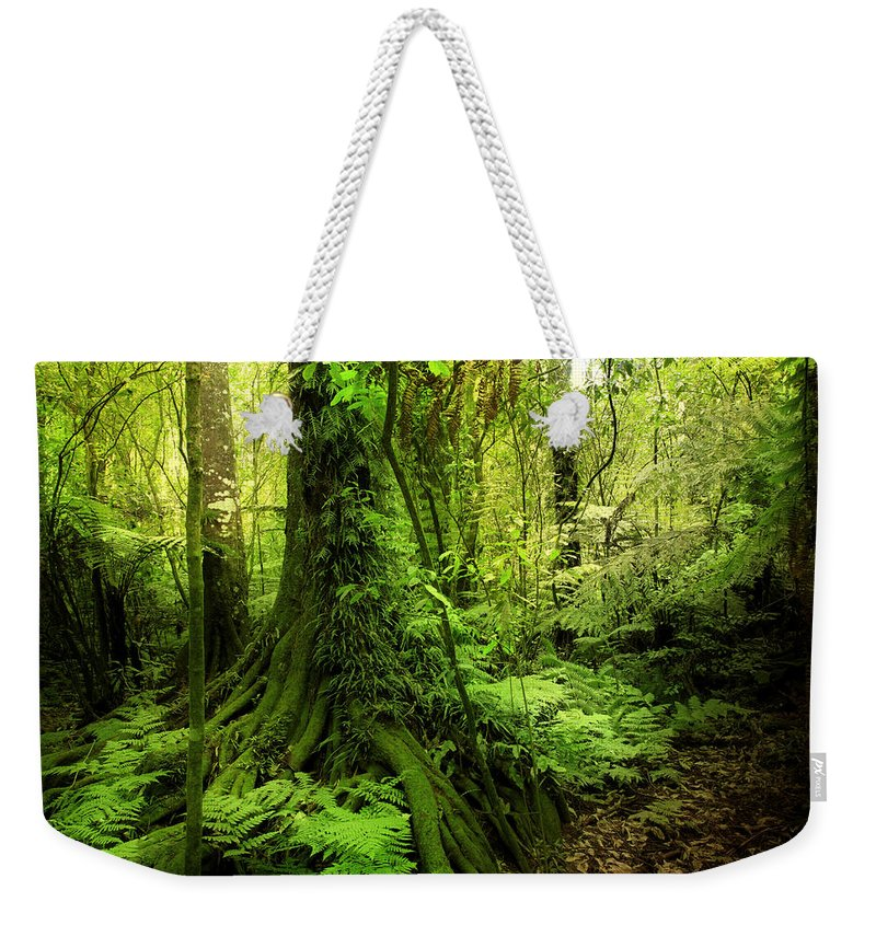 Lush Weekender Tote Bag featuring the photograph Jungle by Les Cunliffe