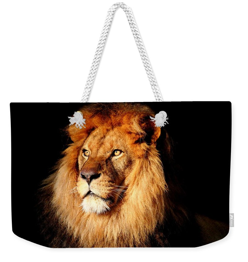 Lion Weekender Tote Bag featuring the photograph Lion by Heike Hultsch