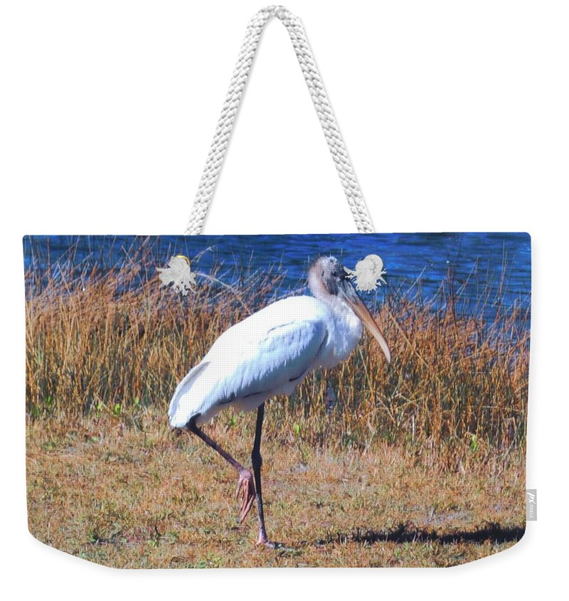 Standing Watch At Lakes Park In Ft.myers Weekender Tote Bag featuring the photograph Woodstork by Robert Floyd