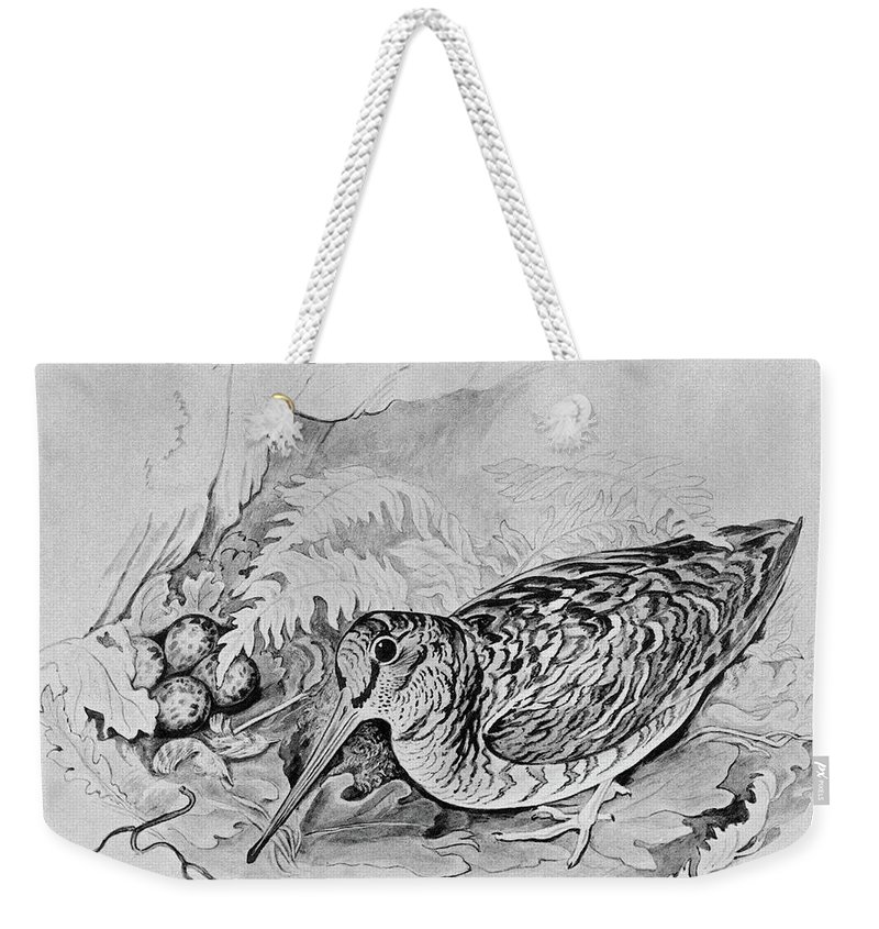 1895 Weekender Tote Bag featuring the drawing Blackburn Birds, 1895 by Granger