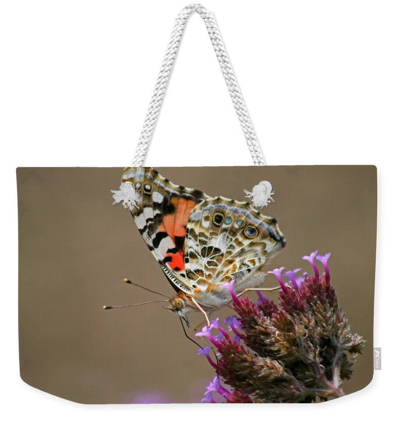 Weekender Tote Bag featuring the photograph American Painted Lady Butterfly by Karen Adams