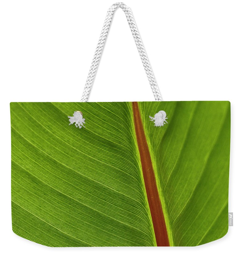 Leaf Weekender Tote Bag featuring the photograph Banana Leaf by Heiko Koehrer-Wagner