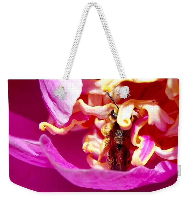 Becky Furgason Weekender Tote Bag featuring the photograph #icantescape by Becky Furgason