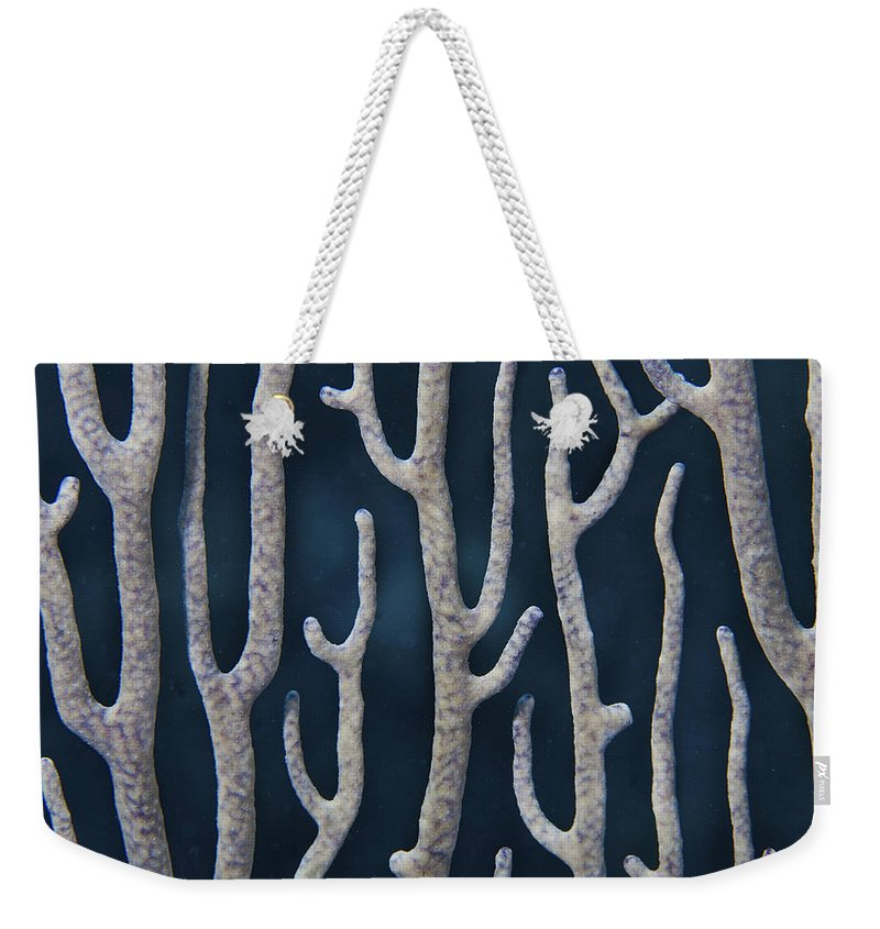 Belize Weekender Tote Bag featuring the photograph Coral Design by Jean Noren
