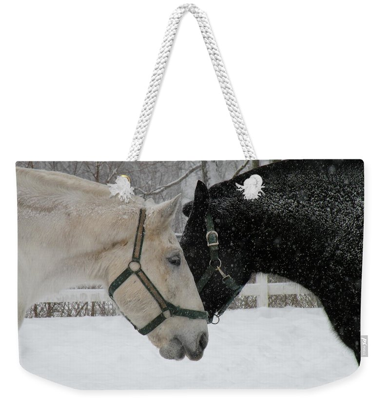 Horses Weekender Tote Bag featuring the photograph Friends by Jeffrey Akerson