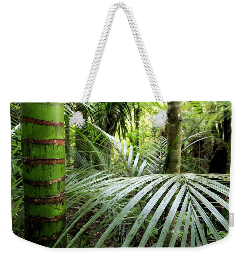 Tropics Weekender Tote Bag featuring the photograph Jungle by Les Cunliffe