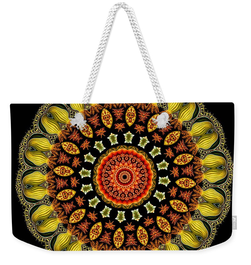 Ernst Haeckel Weekender Tote Bag featuring the photograph Kaleidoscope Ernst Haeckl Sea Life Series by Amy Cicconi