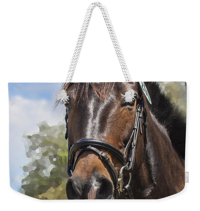 Rocking Horse Stables Weekender Tote Bag featuring the photograph Rocking Horse Stables by Rich Franco
