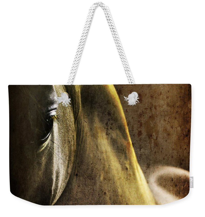 Horse Weekender Tote Bag featuring the photograph The Look by Angel Ciesniarska