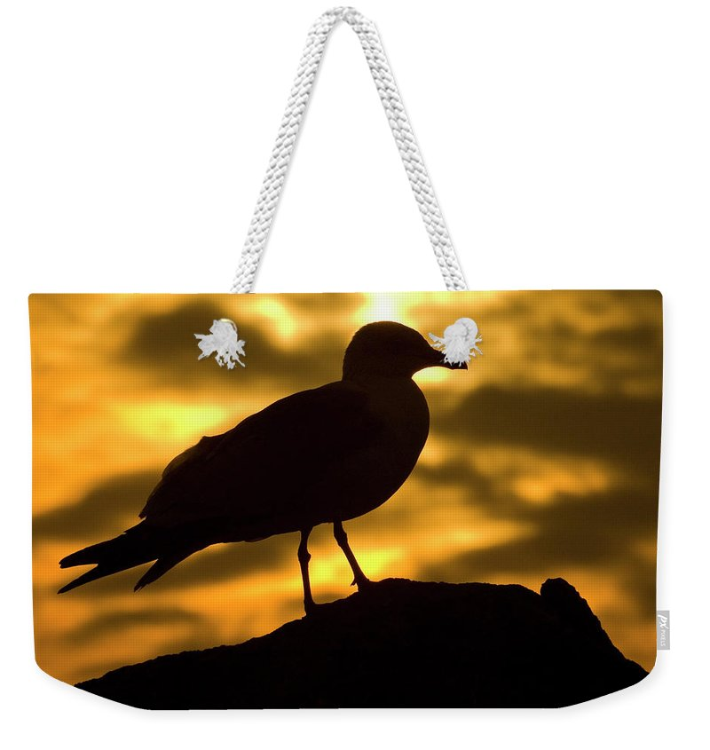 Nature Weekender Tote Bag featuring the photograph Nature And Travel Images by Marcos Veiga