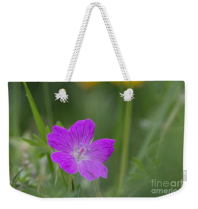 Bloody Cranesbill Weekender Tote Bag featuring the photograph Bloody Geranium by Jivko Nakev