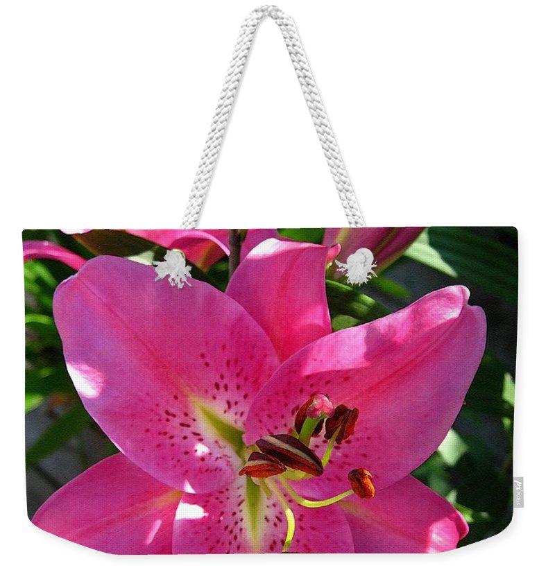Dwarf Oriental Lily Weekender Tote Bag featuring the painting Dwarf Oriental Lily Named Farolito by J McCombie