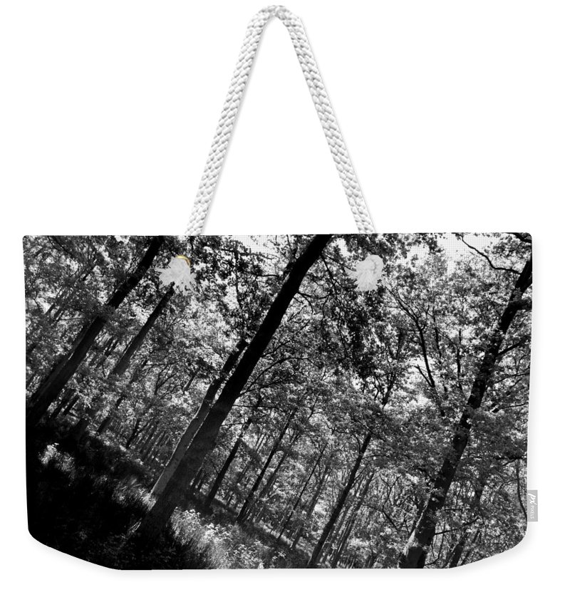Tree Weekender Tote Bag featuring the photograph The Forest by David Pyatt
