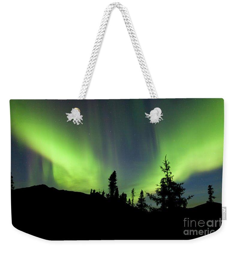 Alaska Weekender Tote Bag featuring the photograph Yukon Taiga Spruce Northern Lights Aurora Borealis by Stephan Pietzko