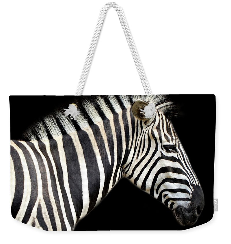 Zebra Weekender Tote Bag featuring the photograph Zebra by Heike Hultsch
