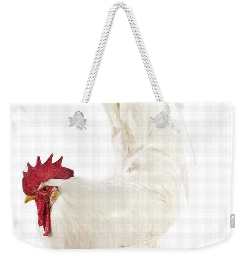 Adult Weekender Tote Bag featuring the photograph Coq Leghorn by Gerard Lacz