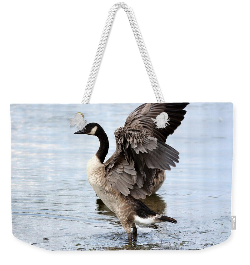 Wildlife Weekender Tote Bag featuring the photograph Goose by Lori Tordsen