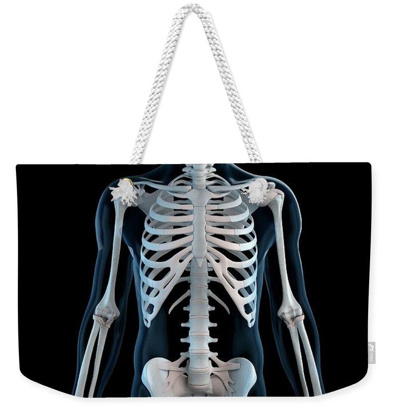 Physiology Weekender Tote Bag featuring the digital art Human Skeleton, Artwork by Sciepro