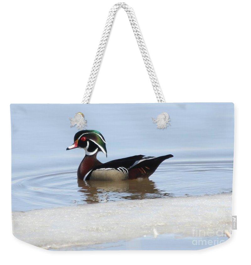 Wood Duck Weekender Tote Bag featuring the photograph Wood Duck by Lori Tordsen