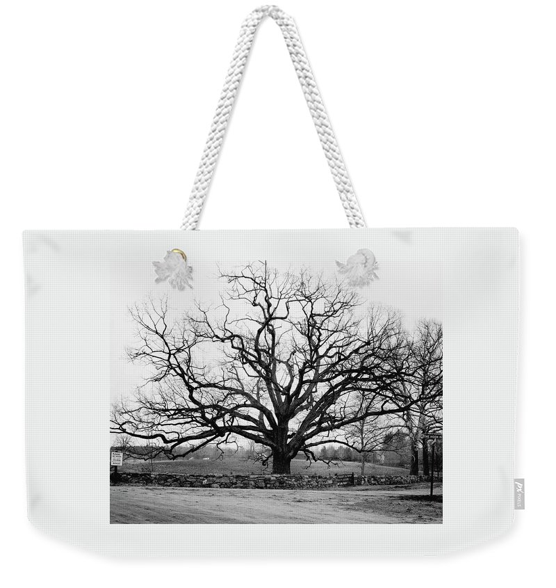 Exterior Weekender Tote Bag featuring the photograph A Bare Oak Tree by Tom Leonard