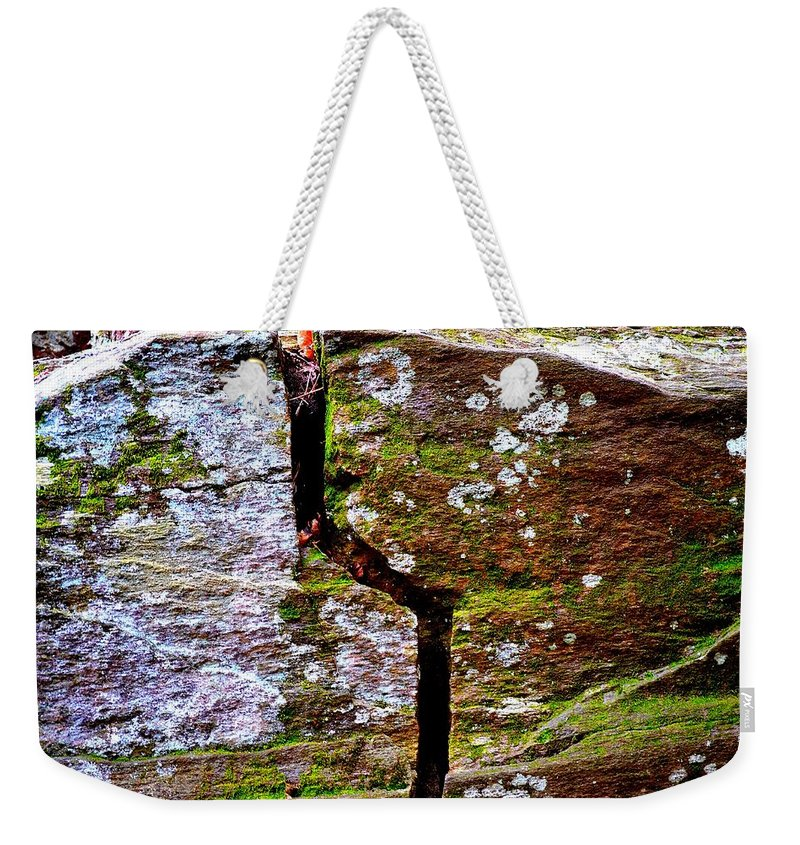 Sweetwater Creek State Park Weekender Tote Bag featuring the photograph A Bit Cracked by Tara Potts
