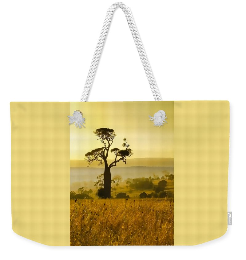 Landscapes Weekender Tote Bag featuring the photograph A Boab Sunrise by Holly Kempe