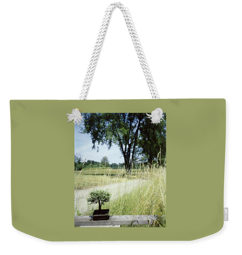Plants Weekender Tote Bag featuring the photograph A Bonsai Tree In A Hayfield by Pedro E. Guerrero