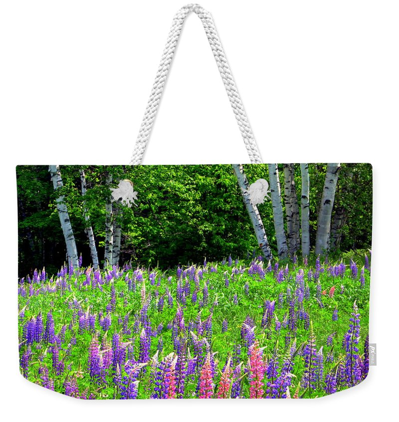 Lupine Weekender Tote Bag featuring the photograph A Breathless Moment Among Lupine by Wayne King