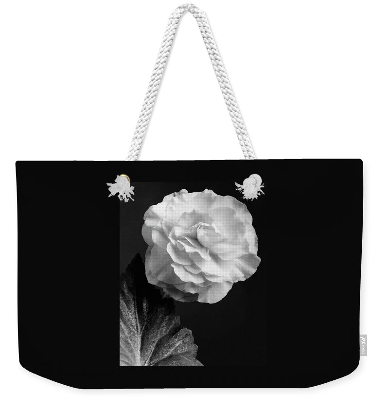 Flowers Weekender Tote Bag featuring the photograph A Camellia Flower by J. Horace McFarland