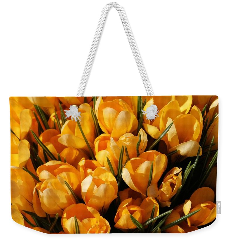 Crocus Weekender Tote Bag featuring the photograph A Crowd Of Crocuses by Doris Potter