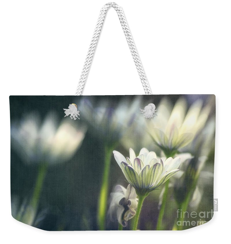 Photo Weekender Tote Bag featuring the photograph A Day In August by Jutta Maria Pusl