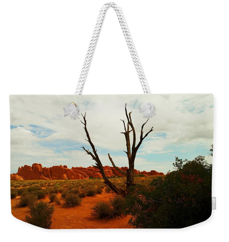 Rocks Weekender Tote Bag featuring the photograph A Dead Tree Foreground A Maze Of Rocks by Jeff Swan