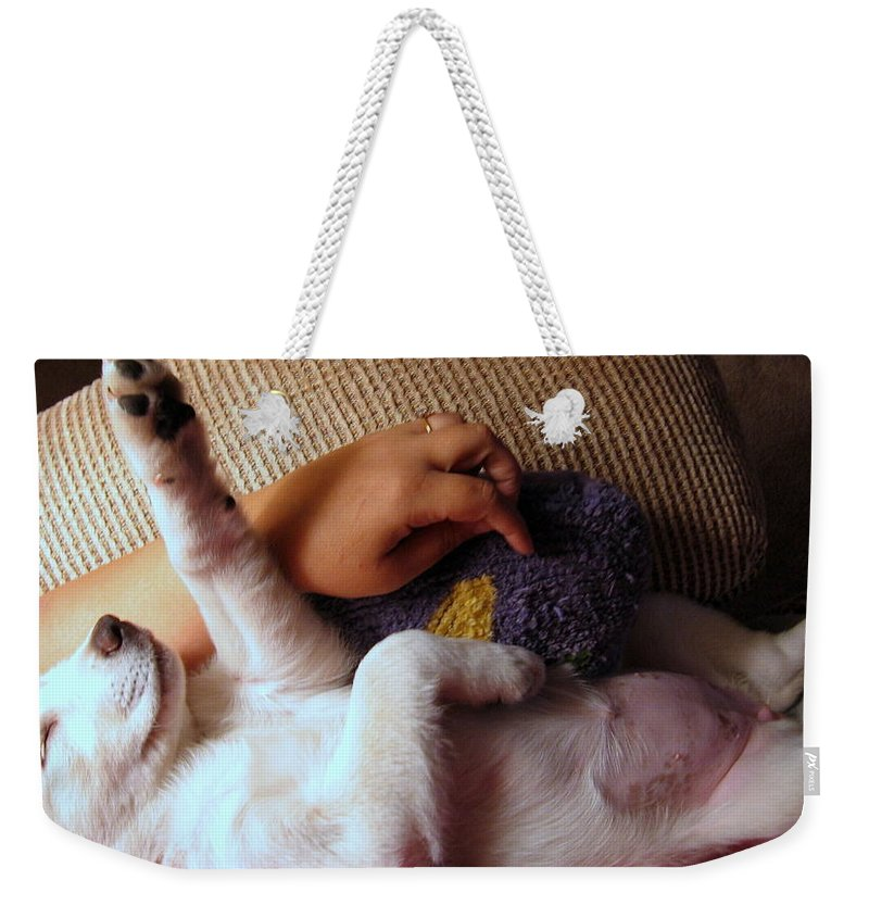 Labrador Weekender Tote Bag featuring the photograph A Dream Of Reaching The Top by Amy Hosp
