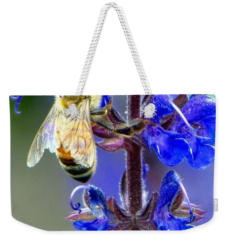Carol R Montoya Weekender Tote Bag featuring the photograph A European Honey Bee And It's Flowers by Carol Montoya