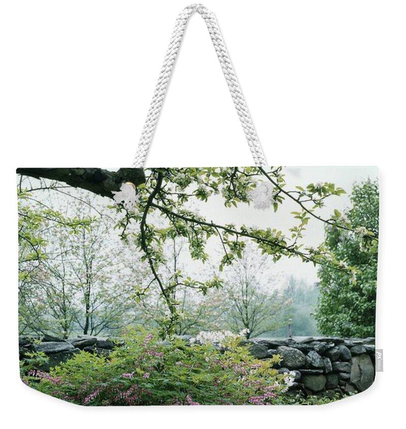 Nobody Weekender Tote Bag featuring the photograph A Flower Bed In Mrs. Frank Audibert's Garden by Samuel H. Gottscho