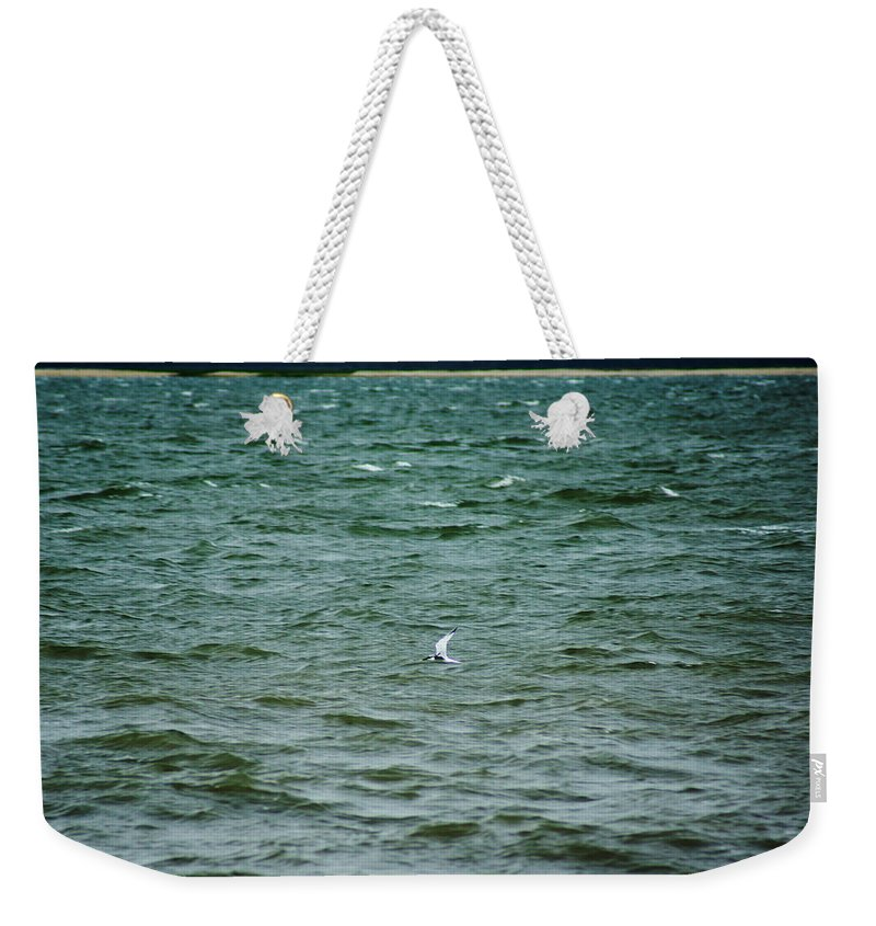 A Forster Tern Fighting The Winds Out At Sea Weekender Tote Bag featuring the photograph A Forster Tern Fighting The Winds Out At Sea by Kim Pate