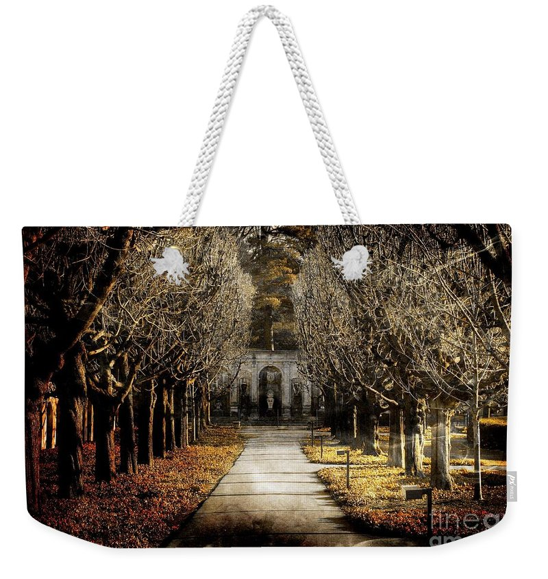 Marcia Lee Jones Weekender Tote Bag featuring the photograph A Glamorous Era by Marcia Lee Jones