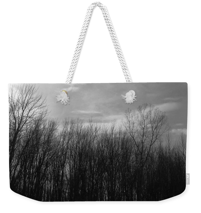 Bark Weekender Tote Bag featuring the photograph A Grey Point Of View by Rhonda Barrett