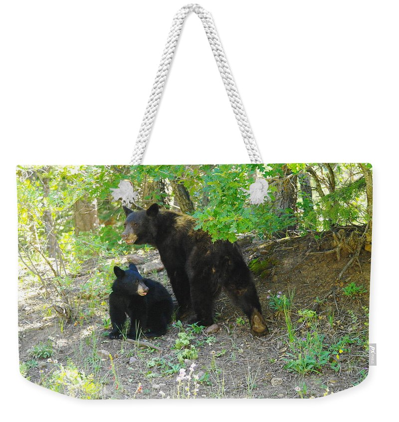 Bears Weekender Tote Bag featuring the photograph A Little Growl Before Departing by Jeff Swan
