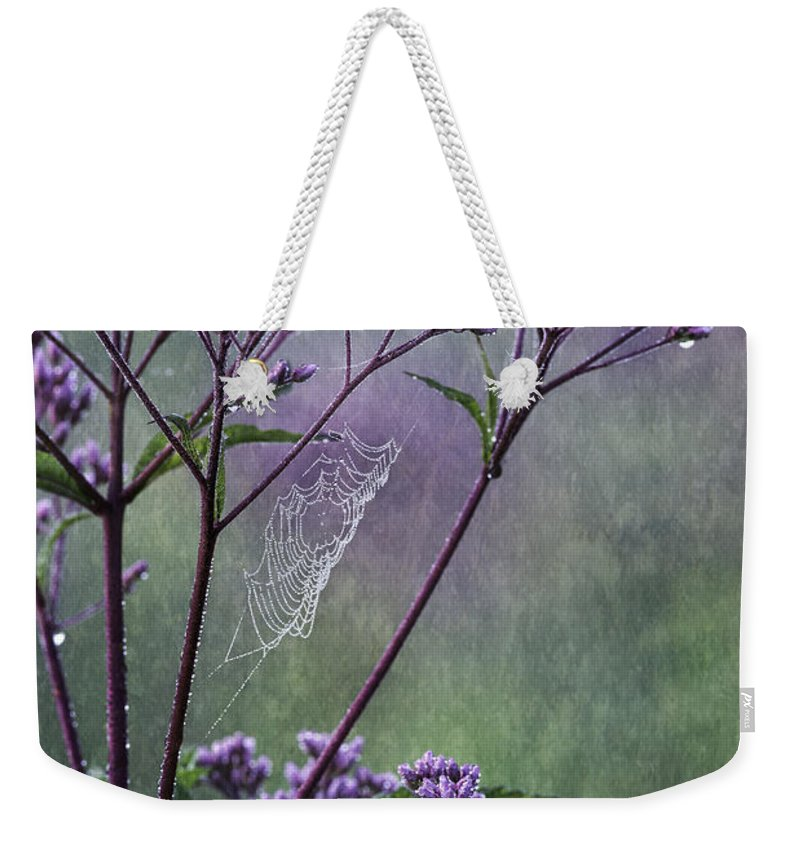 Joe Pye Weed Weekender Tote Bag featuring the photograph A Morning Walk by Dale Kincaid