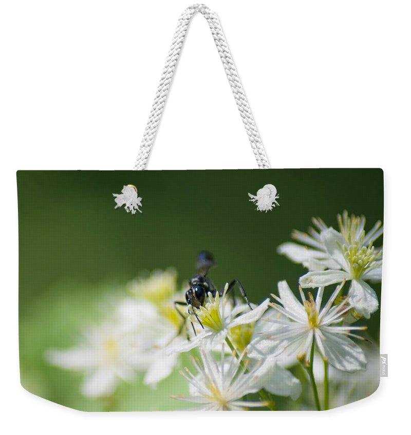 Optical Playground By Mp Ray Weekender Tote Bag featuring the photograph A Nectar Drink For This Black Mud Dauber  by Optical Playground By MP Ray
