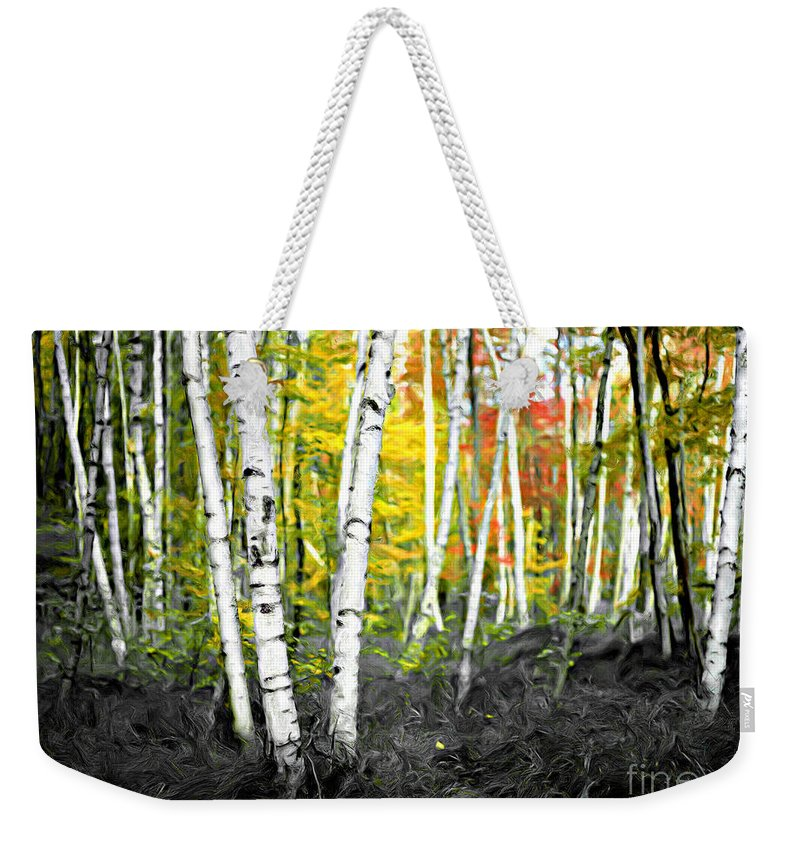 Painting Weekender Tote Bag featuring the photograph A Painting Autumn Birch Grove by Mike Nellums